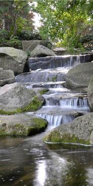 Flusswasser, welches über Steine fließt.