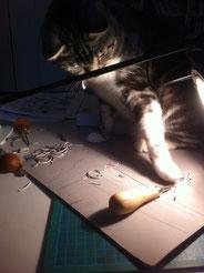 Ito le chat graveur