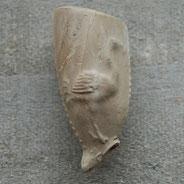 Afbeelding van een Ooievaar of Kraanvogel