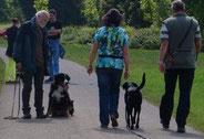 """Umweltkurs: Gelände, Stadtrand, Stadt... lernen Sie zu """"führen"""", Situationen zu analysieren und Konflikte zu bewältigen. Damit Sie und Ihr Hund bei diversen Begegnungen entspannt bleiben."""