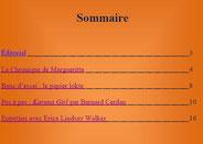 Sommaire (Cliquez sur l'image pour l'agrandir)