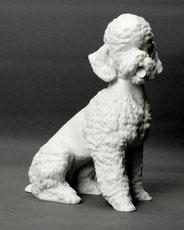 """Porzellanfigur, """"Pudel"""", Alboth & Kaiser, Biskuitporzellan, 18,0 cm , € 195,00"""