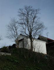 海陽亭 雑木林の中は弁天社地跡の面影