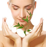 Export:Kosmetik-& Wohlfühlprodukten