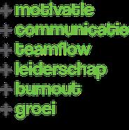 flow-hrm organisatieadvies