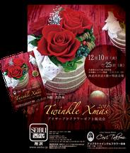 セ・タケミ 2013年クリスマス