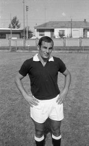 Colondri Mario