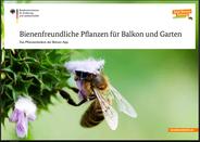 Bienenfreundliche Pflanzen für Balkon und Garten