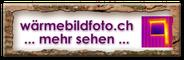 www.wärmebildfoto.ch