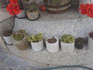 Granit Blumentöpfe