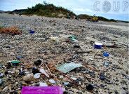 COUP Beach clean up
