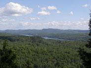 Quelle est la différence entre bois et forêt, bosquet, boqueteau, massif forestier, ONF.