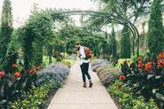 architecte paysager a dijon, votre paysagiste modèle votre jardin de Dijon
