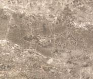 Wachenzeller Dolomit grau-braun