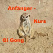 Qi Gong steigert die Stressresistenz