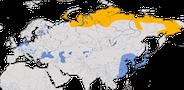 Karte zur weltweiten Verbreitung der Saatgans.
