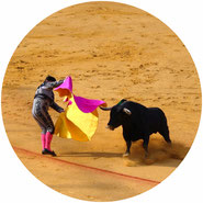 don't support bull-fighting