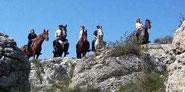 Gîte d'étape  équestre pour chevaux en Haute Provence Luberon