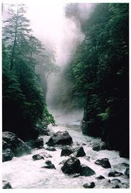 雨のシシ淵