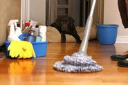 TO CLEAN THE HOUSE