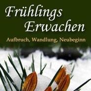 Buchcover - Frühlingsblüher im Schnee