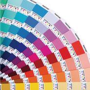カラー指定/pantone