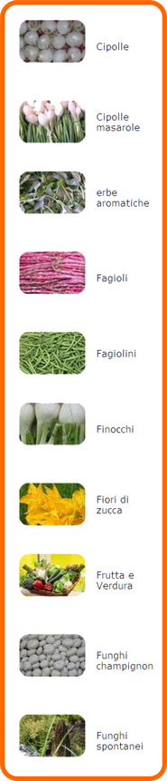 verdura - Ortofrutta Tony - Viale Europa 154 - 39100 Bolzano