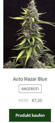 Big Bud Automatic Samen