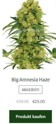 big amnesia haze autoflowering samen