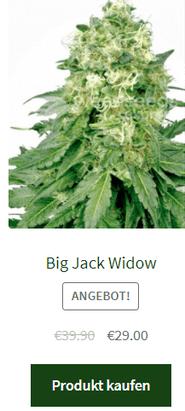 Big Jack Widow autoflowering samen