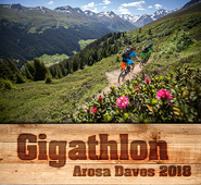 Gigathlon Arosa Davos 2018, Trainingsplan, Triathlon, Duathlon, Laufssport, Gigathlon, Ironman, Ausdauersport