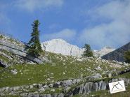 Neunerplatte Südtirol Fanes