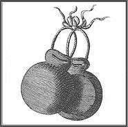 Abb. aus Diderots Encyclopédie