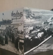 THE HAYLEYS/SYDÄNTALVI-Split