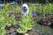 Ms. Siti(13years old).