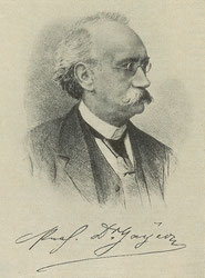 Karl Gayer 1822 - 1907