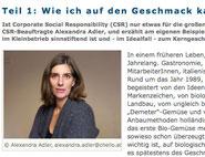 CSR-Blog, Kerngeschäft, Geschäftsmodell, Die Wirtschaft, ÖWV, klare Worte