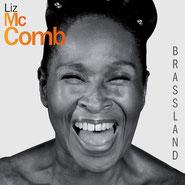 Liz McComb - 2013 / Brassland