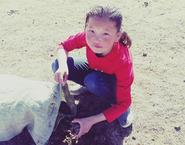 苗木にあげる肥料をつくるために、牛糞を拾っているところ。