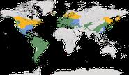 Verbreitung der Gattung Troglodytes
