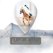 Reithalle Edelweiß , Hotel Edelweiß und Gurgl, reiten, Pferde Shooting