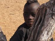 Himbajunge