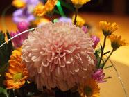 お花はあなたの心のオアシス