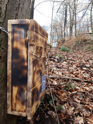 Ziel der Outdoor-Route am Weißen Hirsch