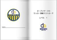 サッカー進級テストカード