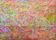 Hippie field -privat - 70x50