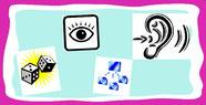 Bild: Wahrnehmung, Funktionen