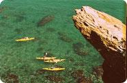 Réserve de Collioure
