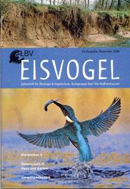20. Ausgabe, 2008