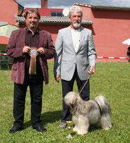 Chen-po Cho-Cho von Ma-ka-zie Tibet Terrier Rüde